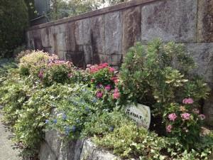 東門の花壇
